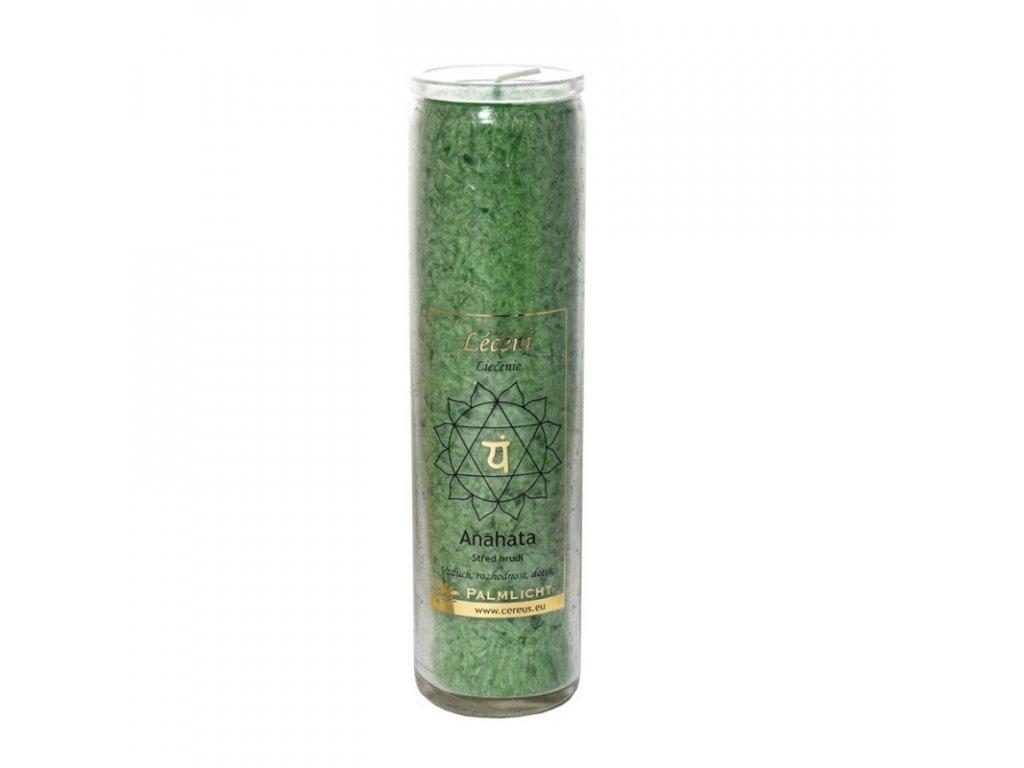 Čakrová svíce zelená - velká - Cereus