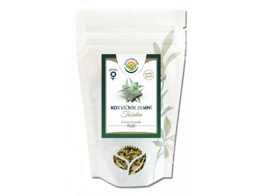 Kotvičník zemní plod 80 g Salvia Paradise