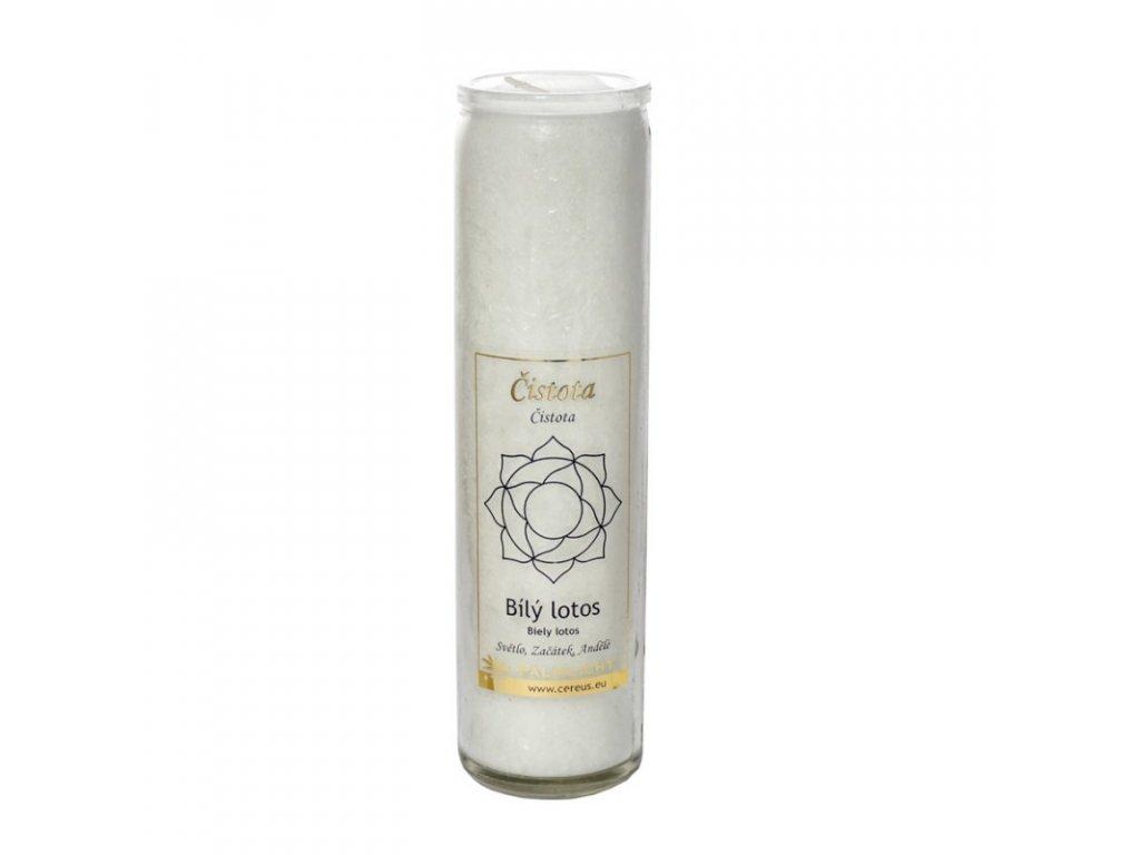 Čakrová svíce bílá - velká - Cereus