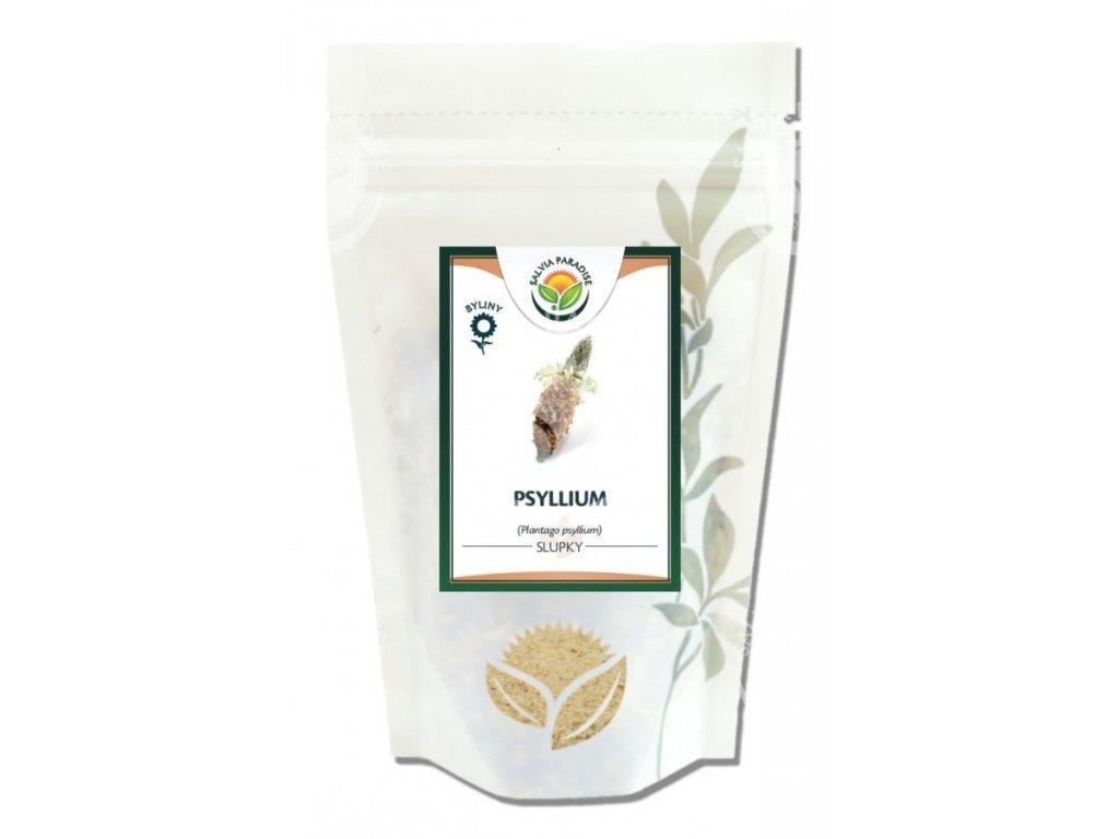 Vláknina Psyllium - Salvia Paradise