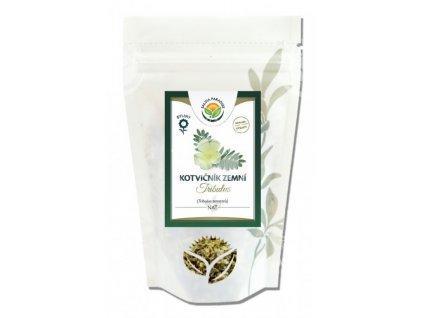 Kotvičník zemní nať 100 g Salvia Paradise
