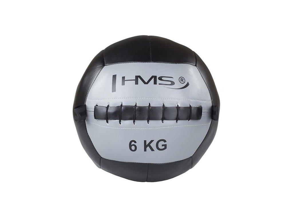 hms wall ball 6kg