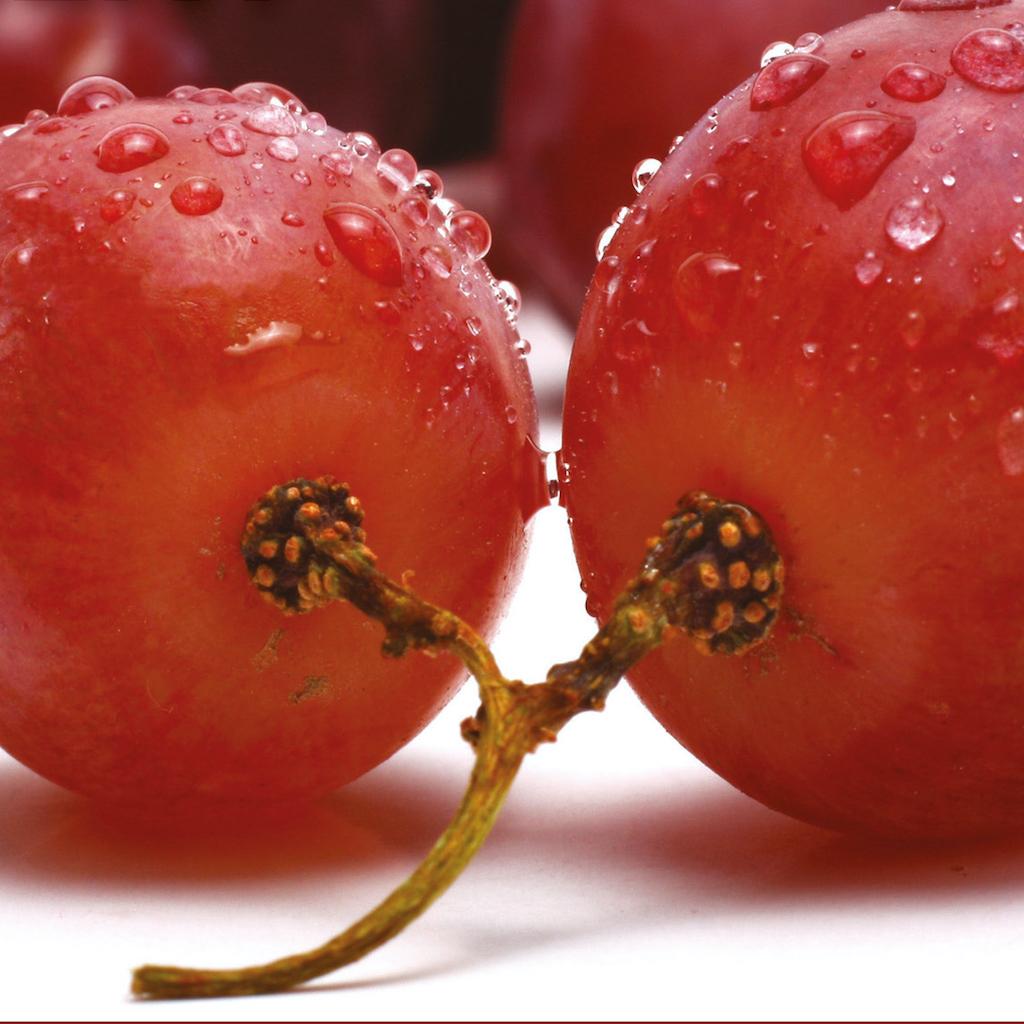 Ošetření na prozáření pleti a snížení tvorby červených žilek Red Vine