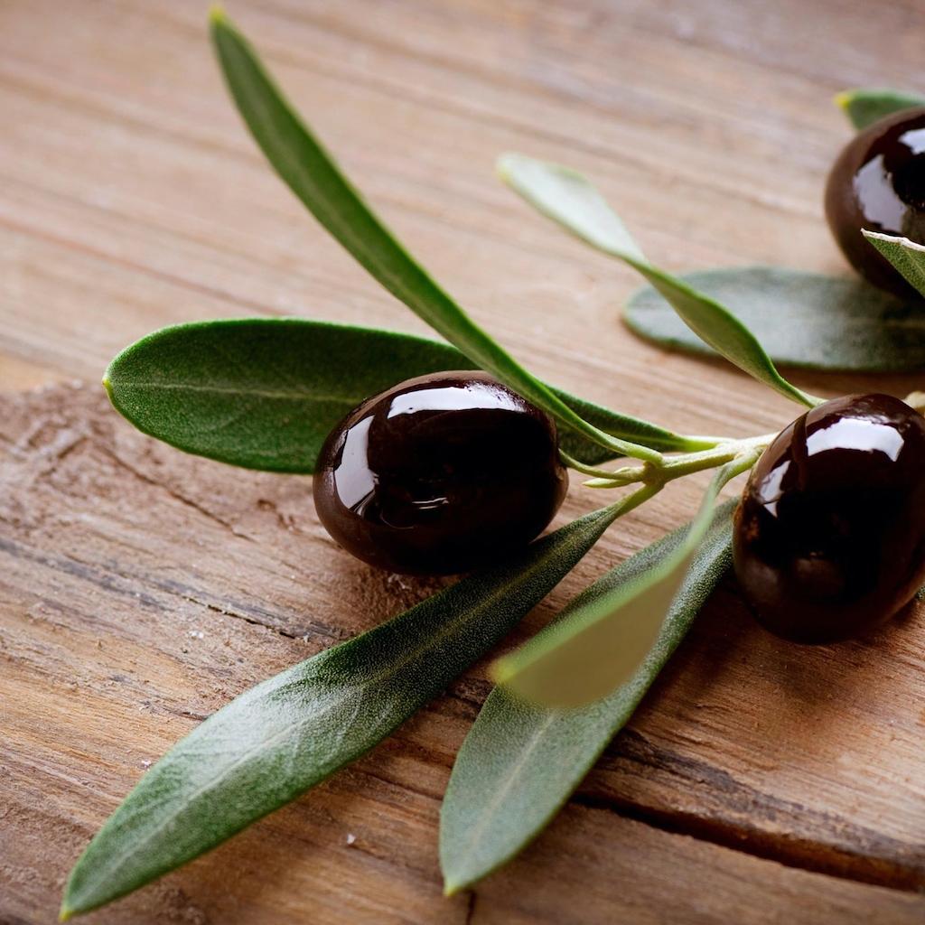 Přírodní ošetření s výtažky oliv a bylinek