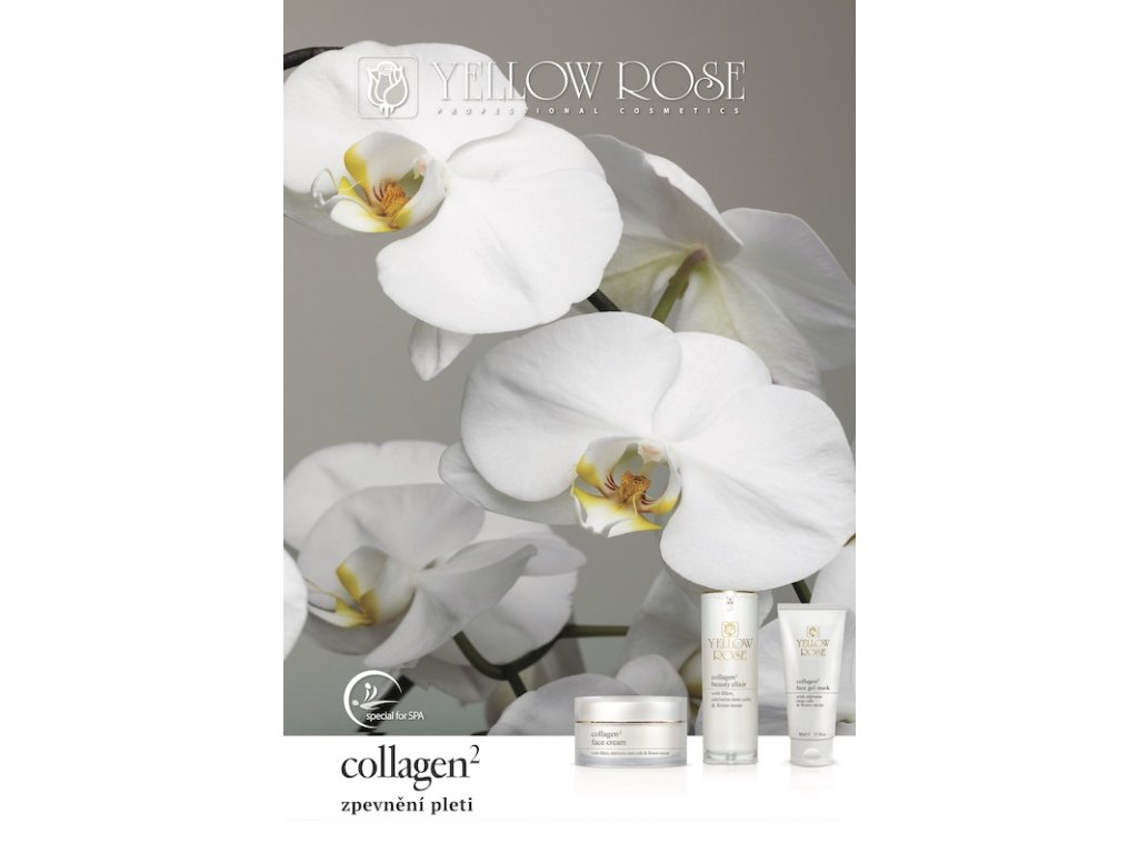 collagen2 yellow rose