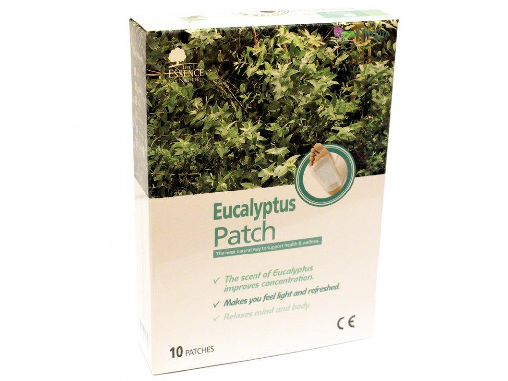 KJI Eucalyptus Path