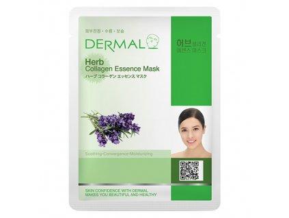 DERMAL Korea Herb Collagen Essence Mask - Esenční kolagenová maska z bylin