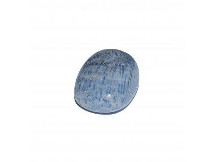 modrý korál (1 of 1) (2)