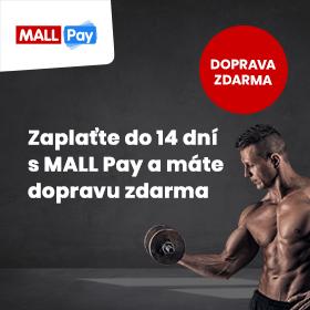 Mallpayy1