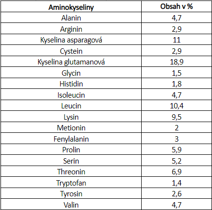 GymBeam Protein TrueWhey_1