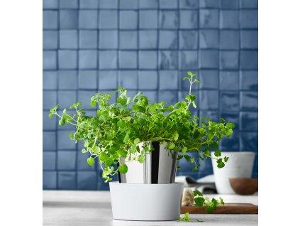 Bylinková zahrádka - 1 samozavlažovací květináč Gourmet WMF