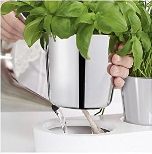 Bylinková záhradka - 1 samozavlažovací kvetináč Gourmet WMF