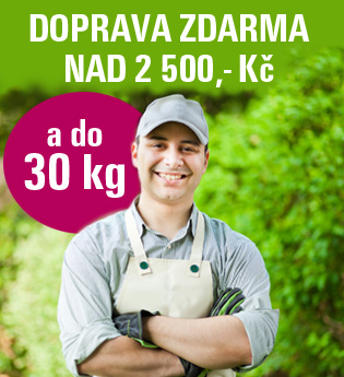 Doprava