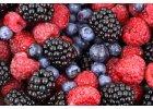 Hnojiva na ovoce