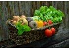 Hnojiva na zeleninu