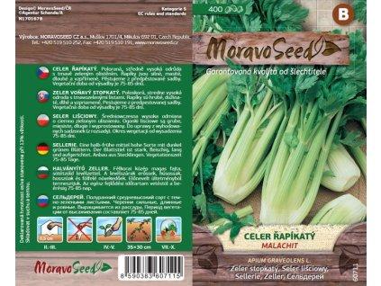 Celer řapíkatý MALACHIT