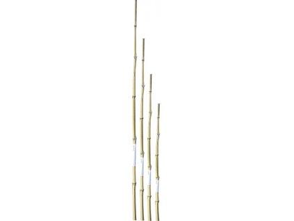 Bambusová tyčka 90 cm