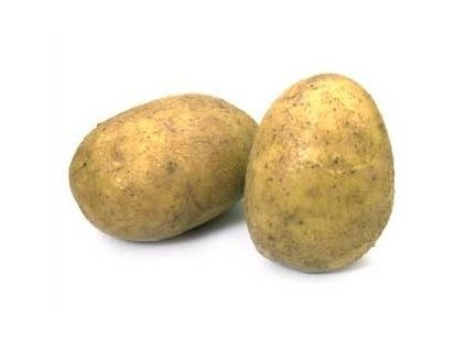 Sadbové brambory DALI 5 kg pytel                              varný typ BA
