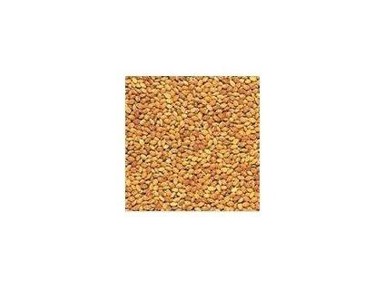 Proso žluté  500 g