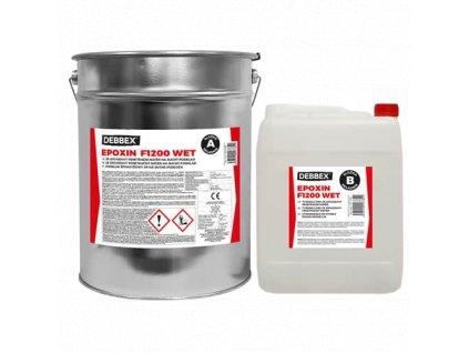 Epoxin F1000 Wet
