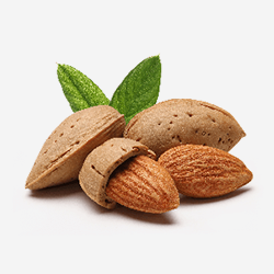 mandle vitamin E (2)