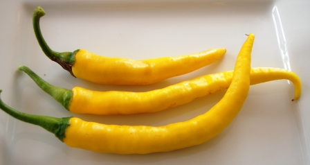 chilli cayenne yellow