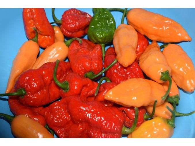 Mix Chilli semínek HOT 10ks