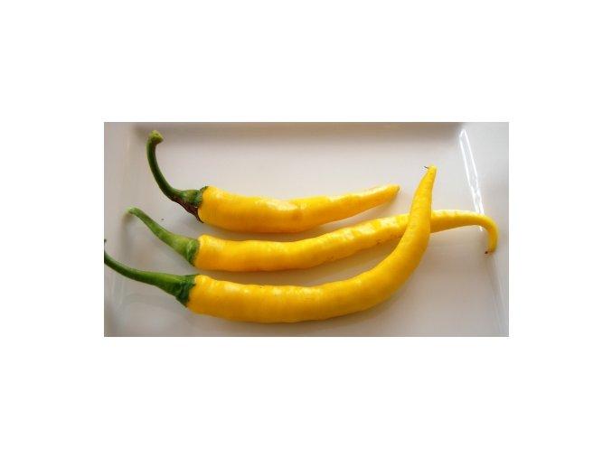 chilli cayenne yellow