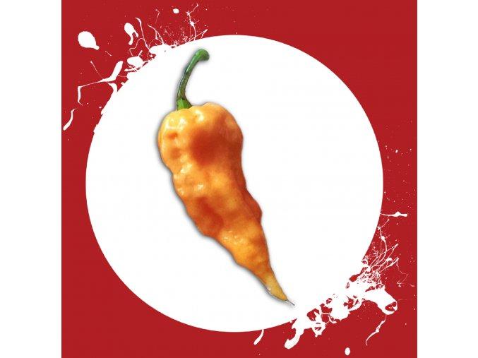 Sazenice a semínka chilli Bhut jolokia peach