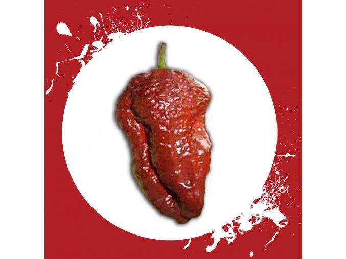Sazenice a semínka chilli Brow butlah