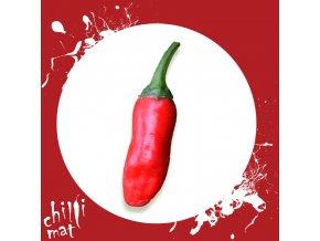 Sazenice a semínka chilli Ethiopian red