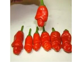 penis red Red Hot Peter Pepper Seeds Vegetables Seed Most Funny Peppers