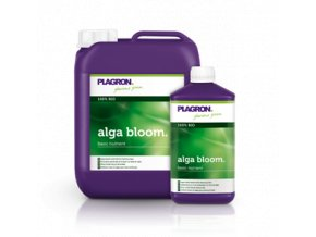 1916 alga bloom