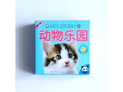 Čínské znakové kartičky – domácí zvířata