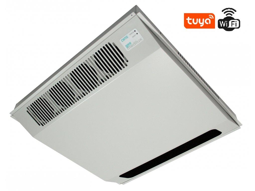 CW110 W1