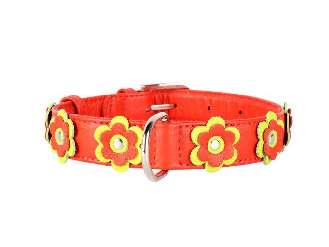 Plochý kožený obojok pre psy s kvietkami červený