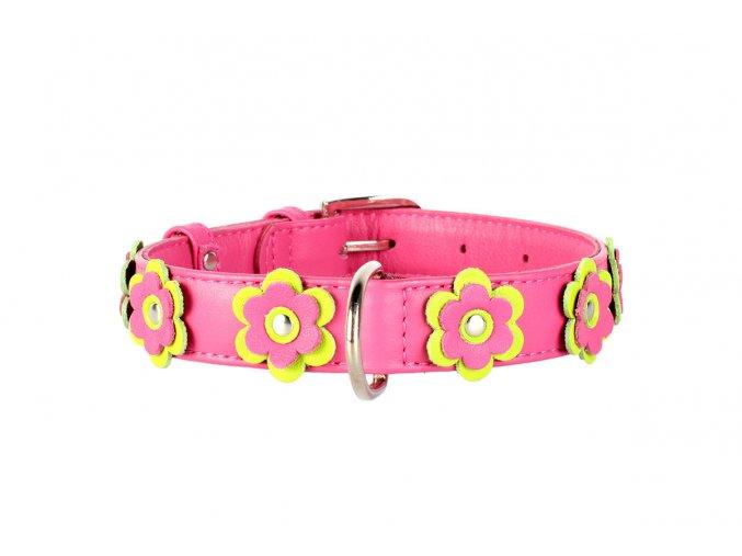 Plochý kožený obojok pre psy s kvietkami ružový