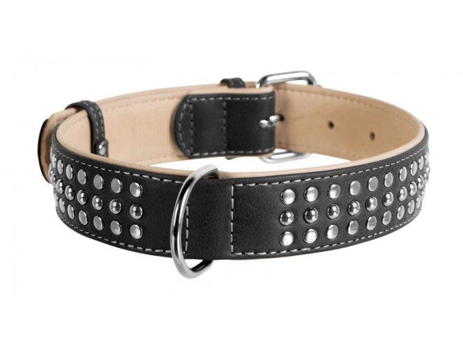 collar kvalitny kozeny obojok soft pre velke psy vybijany wau dog 1