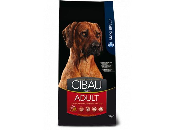 cibau adult maxi@web
