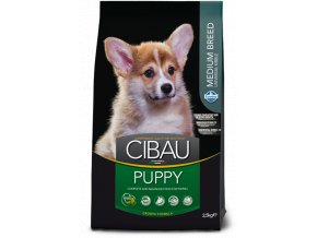 cibau puppy medium@web