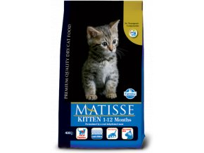 matisse kitten@web
