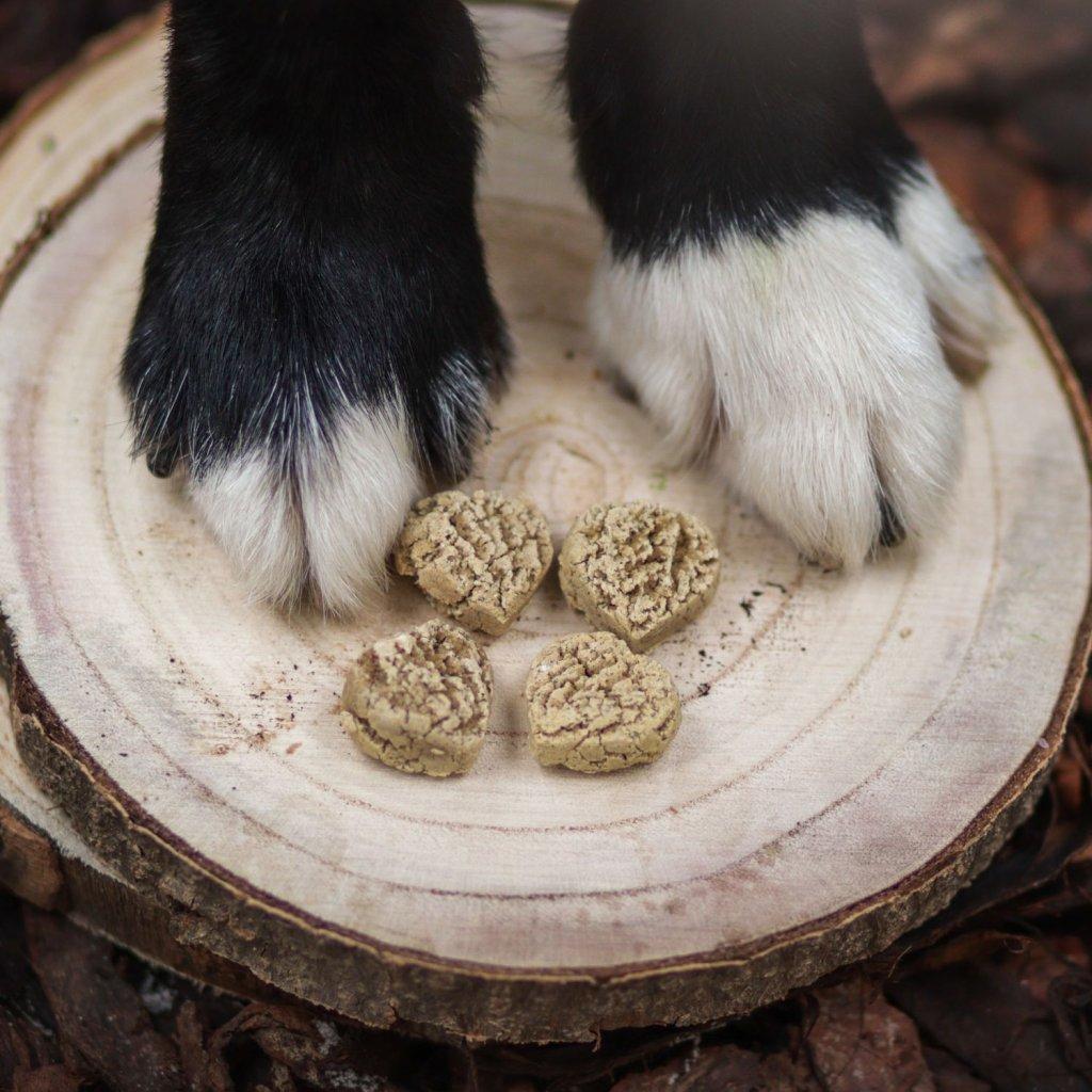 Konopne susenky pro psy kureci (3)