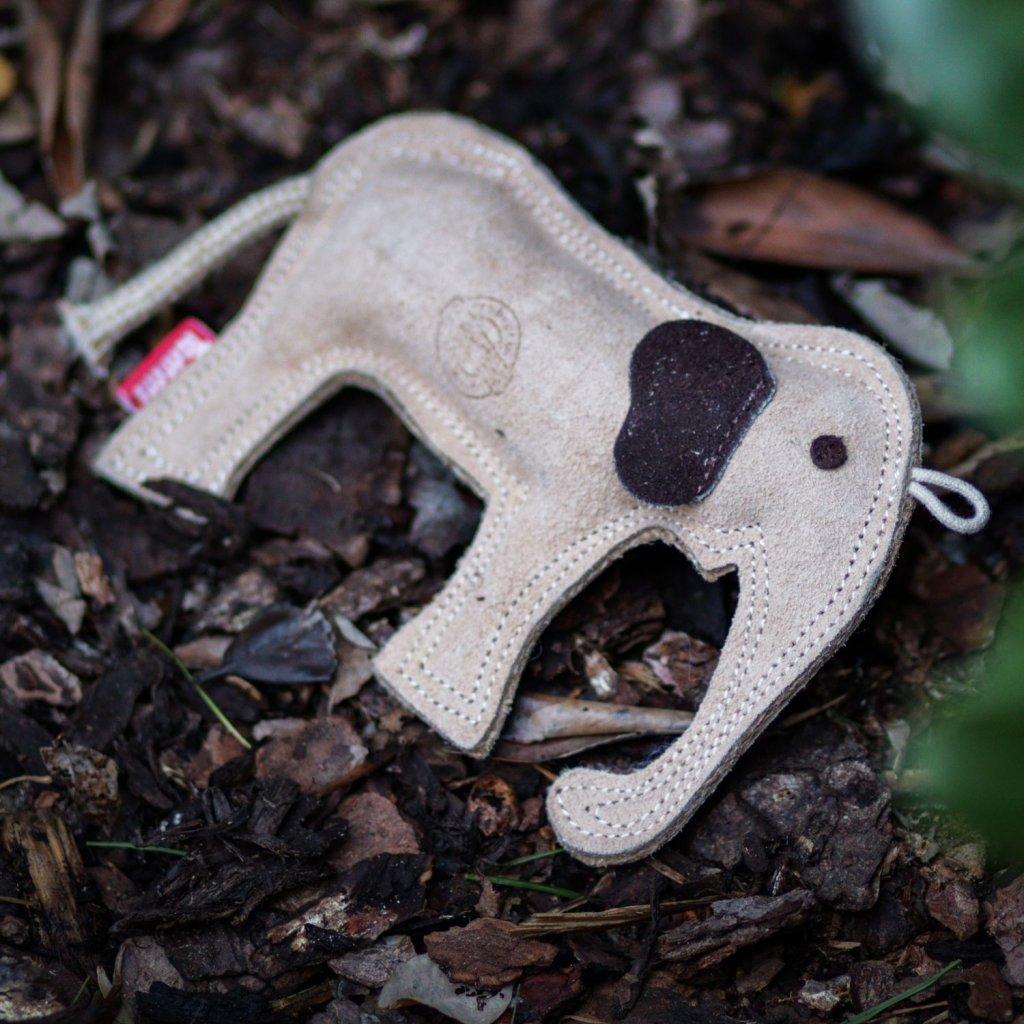 Hracky pro psy slon (4)