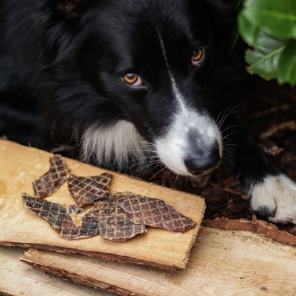 Susene maso pro psy srnec (2)