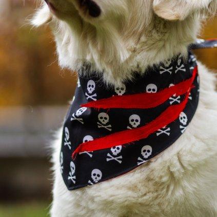 Satek pro psy pirat (1)