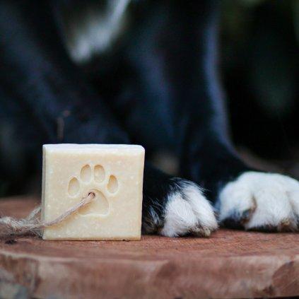 Chlupaty tuhy sampon pro psy (4)