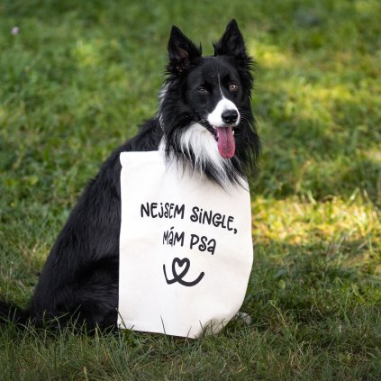 Taska nejsem single mam psa (9)