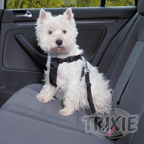 Vybavení do auta pro psy