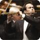 Profesionální flétny