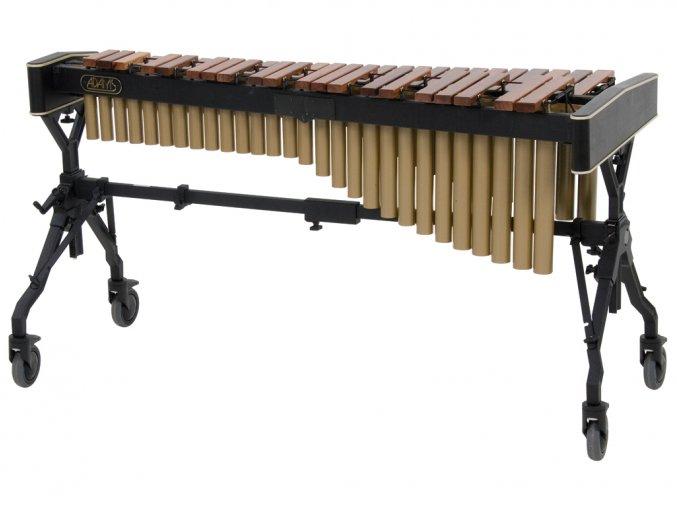 adams xylophone 4 okt honduras